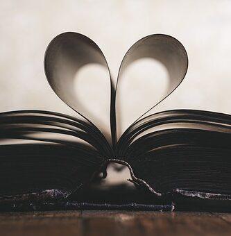 frases sobre libros